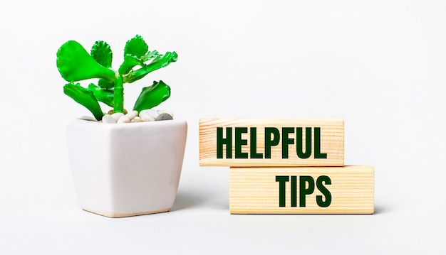 On a light background, a plant in a pot and two wooden blocks with the text helpful tips