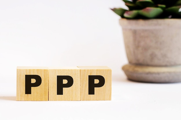 On a light background, wooden cubes with the inscription ppp paycheck protection program and a flower in a pot. defocus