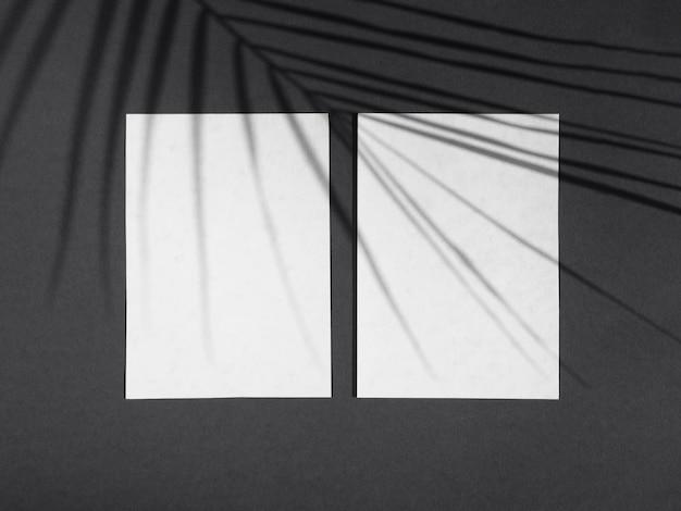 Sfondo nero chiaro con spazi bianchi di carta e un'ombra di foglia di ficus
