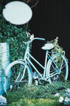Light blue bicycle near green plants
