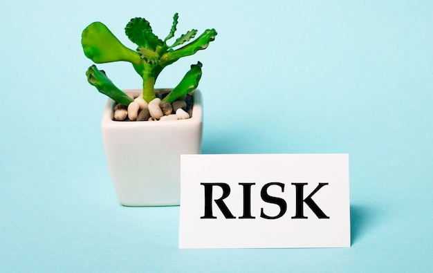 On a light blue surface - a potted plant and a white card with the inscription risk