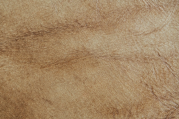 Light brown leather textured background