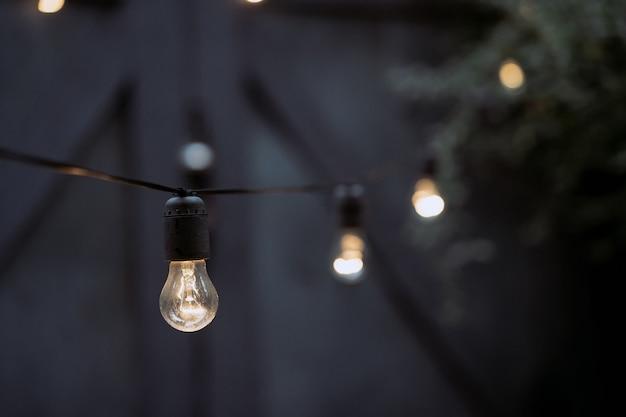 屋外パーティーの電球の装飾ランプの花輪は庭にぶら下がっています