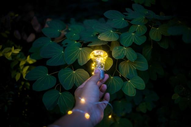 Light bulb fantazy, light bulb in hand, light bulb and bokeh