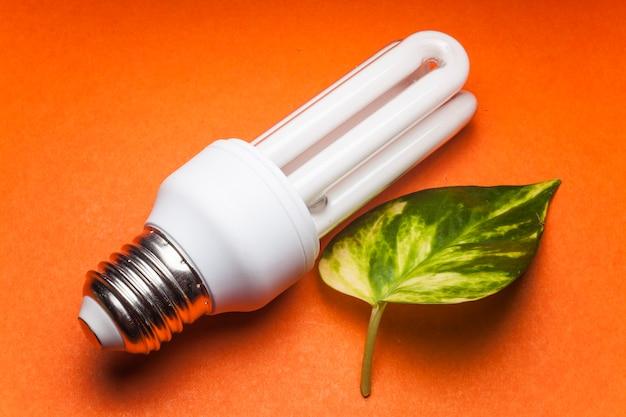 緑の世界のための電球