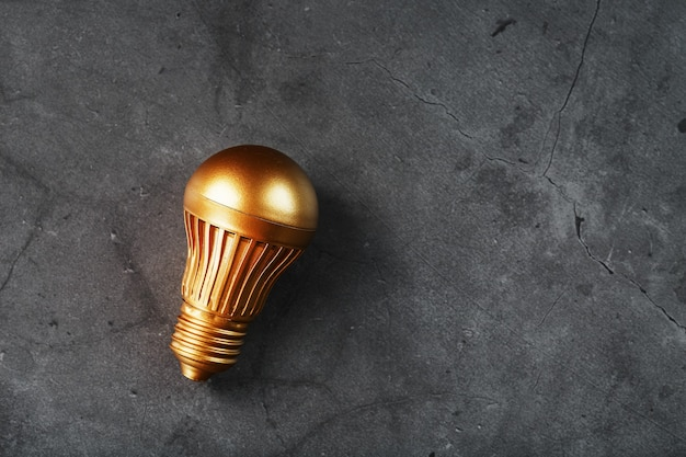 Light bulb from gold on black stone concept of a profitable idea