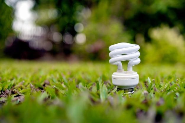 緑の草の上で光る電球