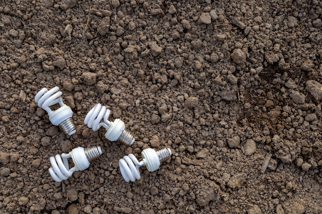 土に光る電球