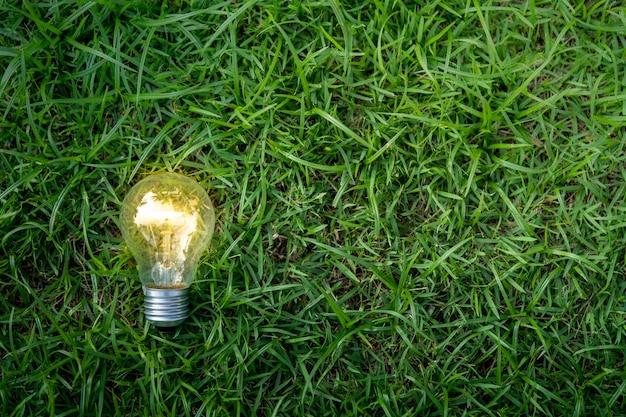 Light bulb on green grass with beauty bokeh