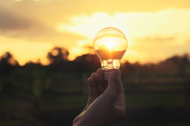 Light bulb on hand with sunshine