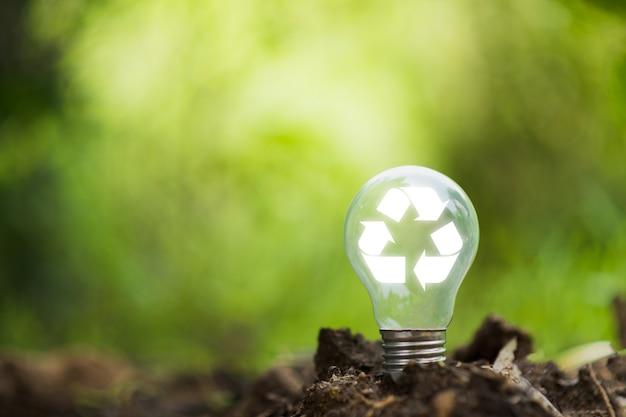 자연 bokeh 배경으로 토양에 전구입니다. 환경 및 에너지 자원 개념입니다.