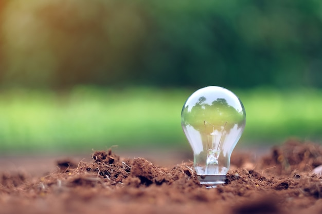 Light bulb or lamp on soil with green background.