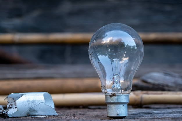 木材の上に立って電球-省エネの概念と大きなアイデアを持っています。