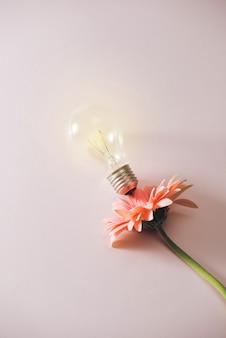 ピンクの背景に美しい花と電球