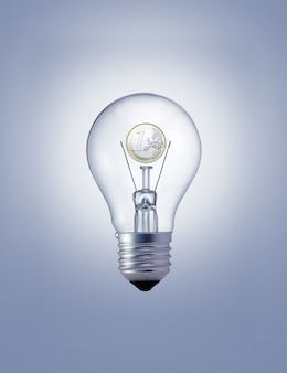 Light bulb with one euro coin