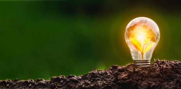 電球は、クリーンエネルギーの成長とビジネスの成長の概念を伝えます。スタートアップビジネスコンセプト、csrコンセプト