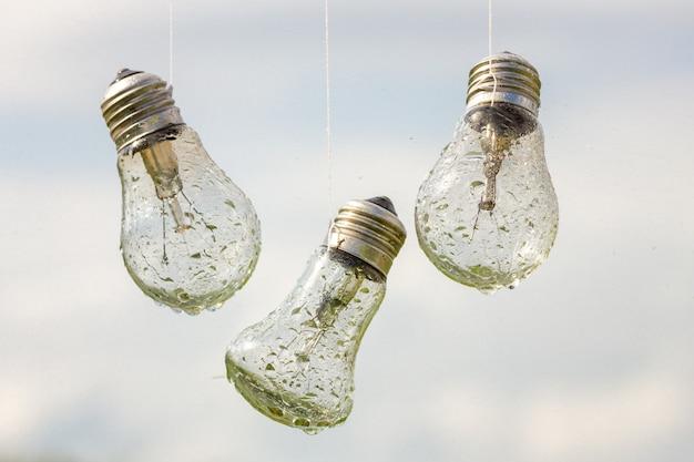 Light bulbs hang in the rain