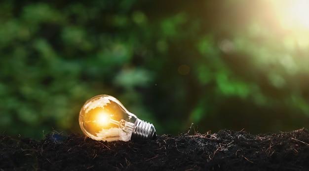 자연 배경 아이디어 개념에서 바닥에 누워 전구
