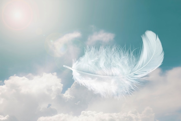 Light fluffy white bird feather floating in the sky