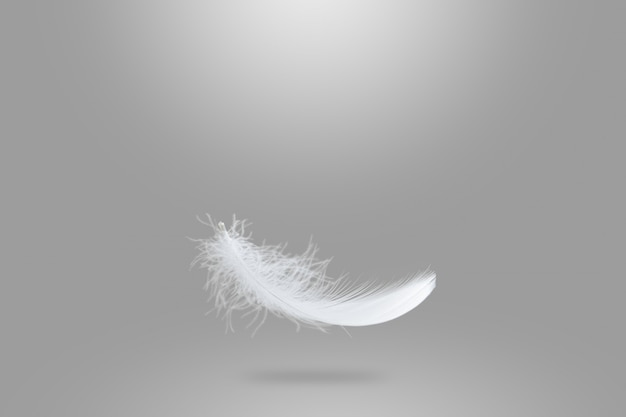 Light fluffy white feather falling in the air