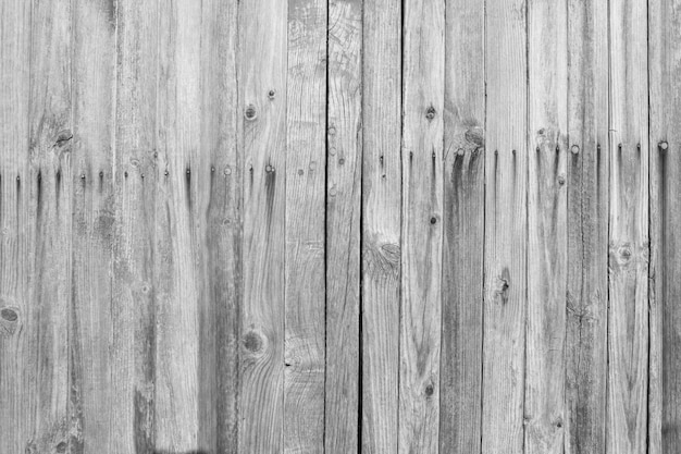Light gray wooden wall
