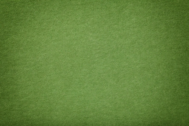 Light green matt suede fabric  velvet texture,