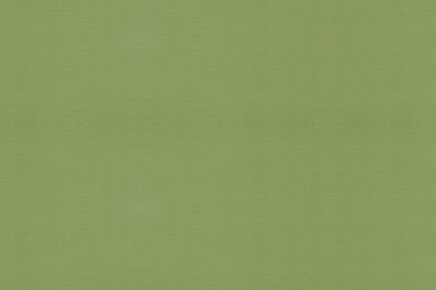 Light green paper textured background. clean textured background