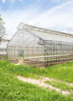 Light greenhouse