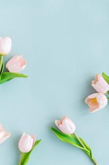 空白の青い背景に淡いピンクのチューリップ