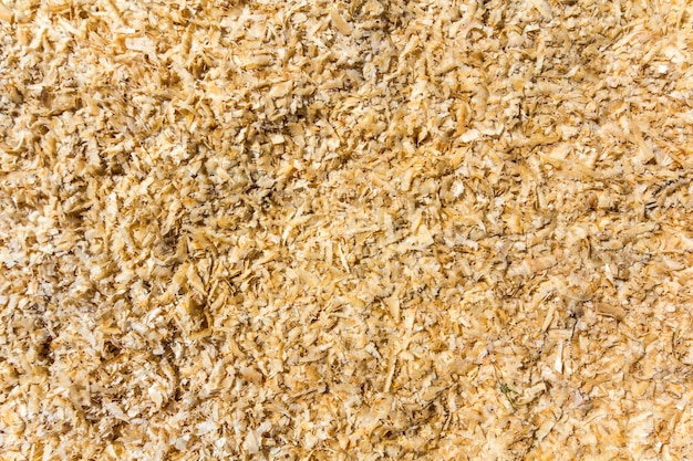 Light soft yellow brown natural bark wooden chips, recycled material surface.