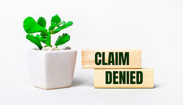 On a light surface, a plant in a pot and two wooden blocks with the text claim denied