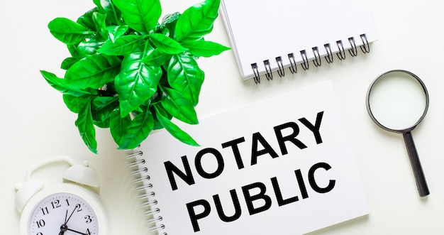 On a light surface, there is a white alarm clock, a magnifying glass, a green plant and a notebook with the words notary public