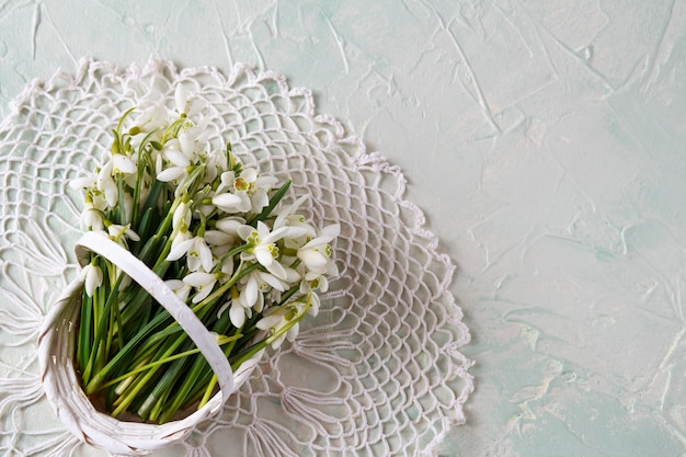 On a light table snowdrops in a basket and a tablecloth of lace