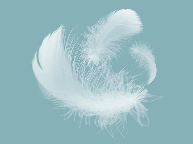 공중에 떠 있는 밝은 흰색 깃털