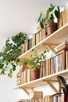 Light wooden bookshelves with hardback overturned books in white interior, indoor flowers on the shelves, home library, biophilic design and plants