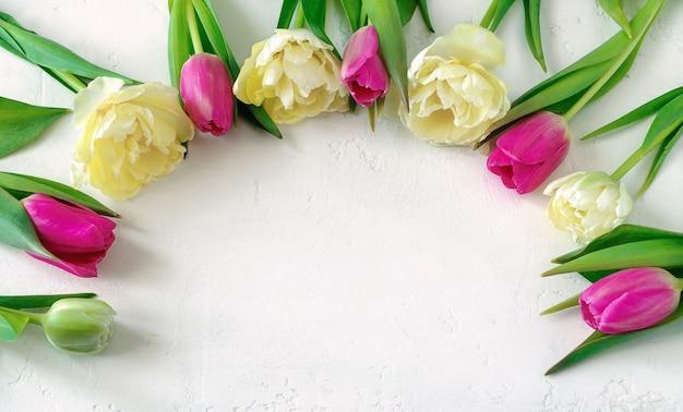 Светло-желтые махровые и розовые тюльпаны лежат полукругом на светлом фоне