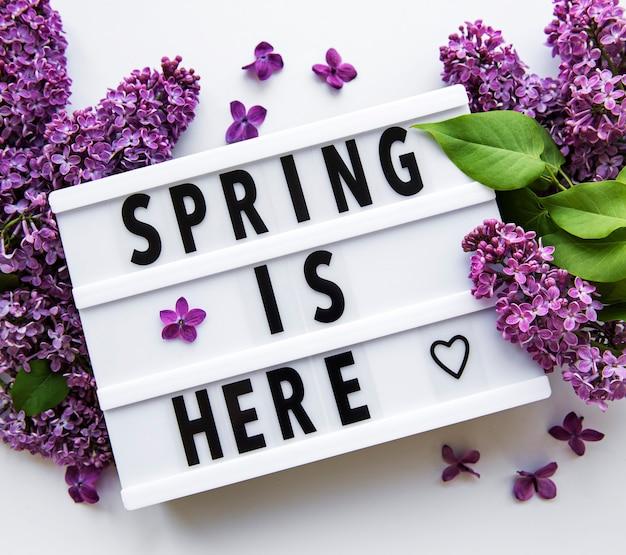Лайтбокс с текстом весна здесь и сиреневые цветы на белом, вид сверху