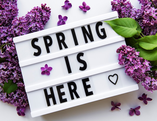 Lightbox with text spring is here and lilac flowers on a white table
