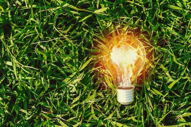 緑の芝生の上の電球。コンセプトエネルギーパワー