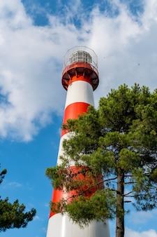 ジョージア州ポティの黒海にある昼間の灯台。赤と白。木の近くの澄んだ青い空に対して。