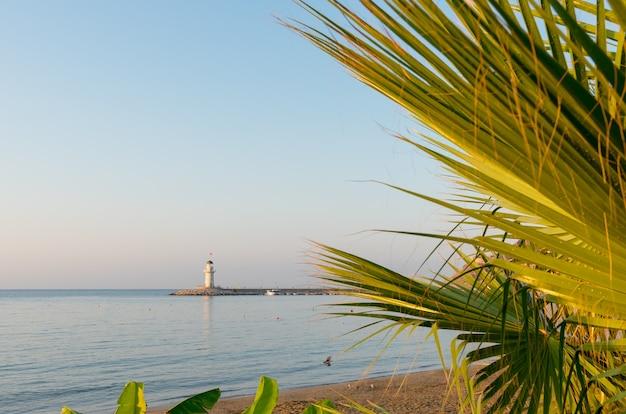 シダに囲まれたトルコのビーチを見下ろすアラニヤ港の灯台