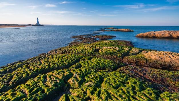 海岸の灯台、海の風景