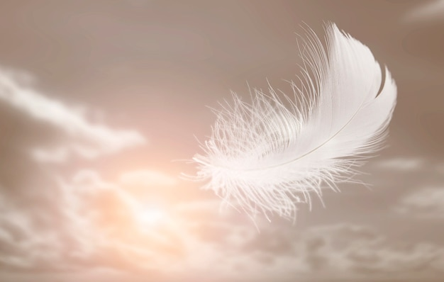 Lightly white feather floating in the sky abstract feather flying in heavenly