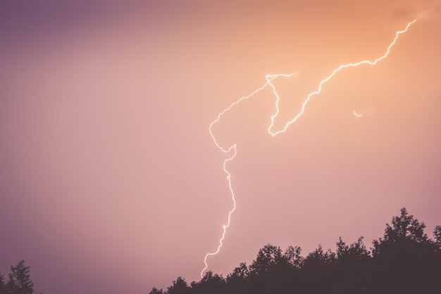 A lightning bolt in the sky above the silhouette of the forest.