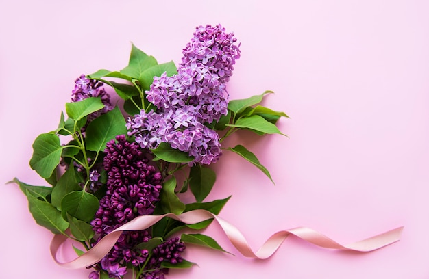 Lilac in flat style on pink background. beautiful spring. overhead view.