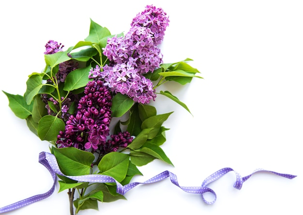 Lilac in flat style on white background. beautiful spring. overhead view.