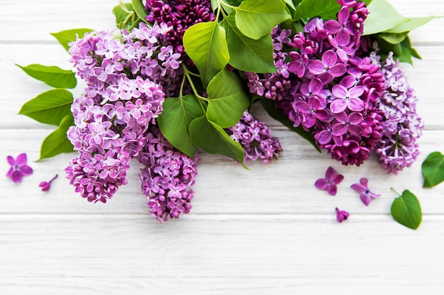 Lilac in flat style on white wooden background. beautiful spring.
