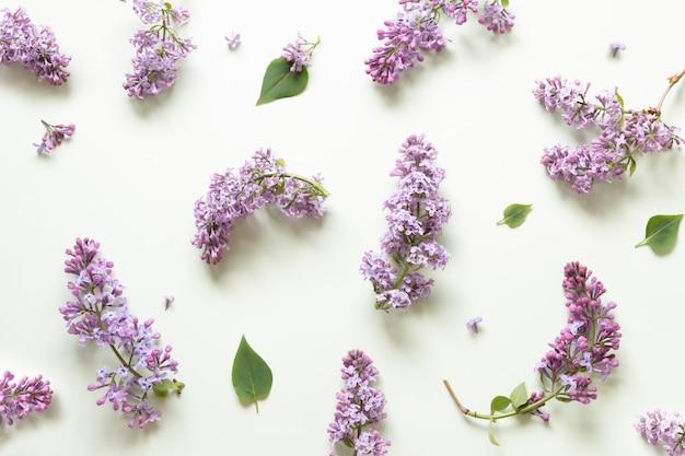 Lilac flower pattern on a mint green