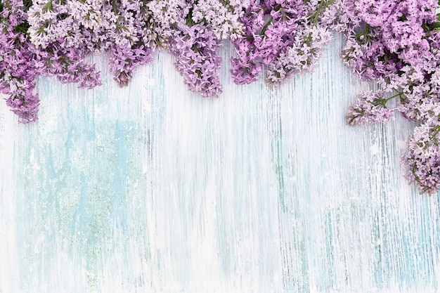 Lilac flowers border on blue pastel background. top view, copy space.