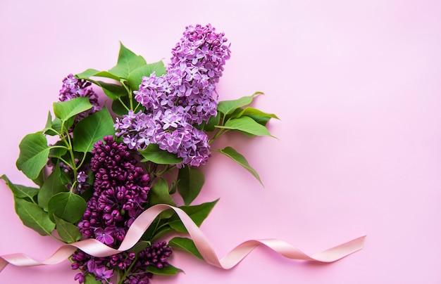 Цветки сиреневые, окаймляют розовым.